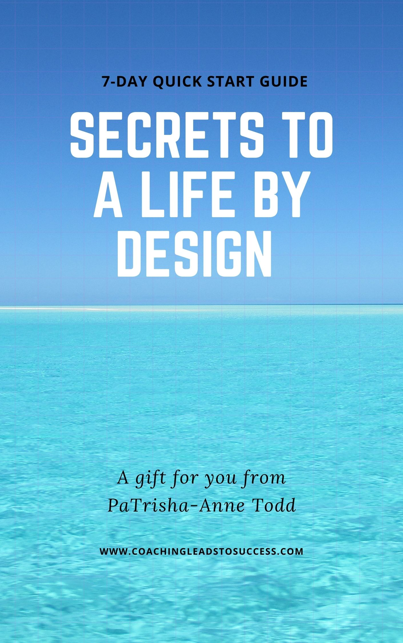 Secrets To A Life By Design a 7 day quick start guide, a gift for you from  PaTrisha-Anne Todd at www.CoachingLeadsToSuccess.com