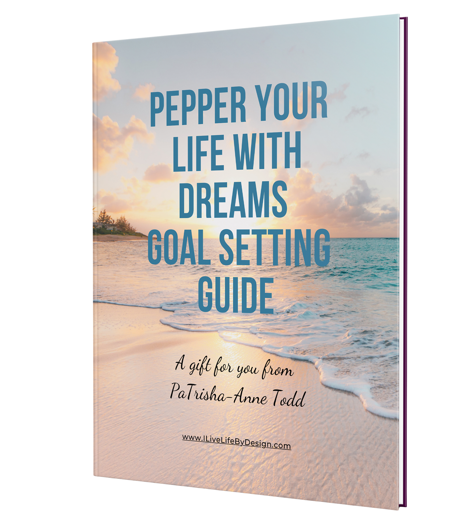 Pepper Your Life with Dreams Goal Setting Guide a GIFT from Master Coach and Trainer, PaTrisha-Anne Todd at www.CoachingLeadsToSuccess.com